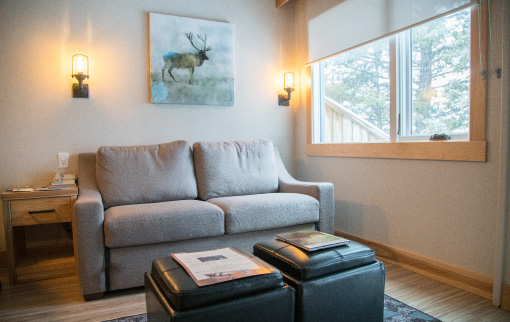 One Bedroom plus Loft, Queen Doubles
