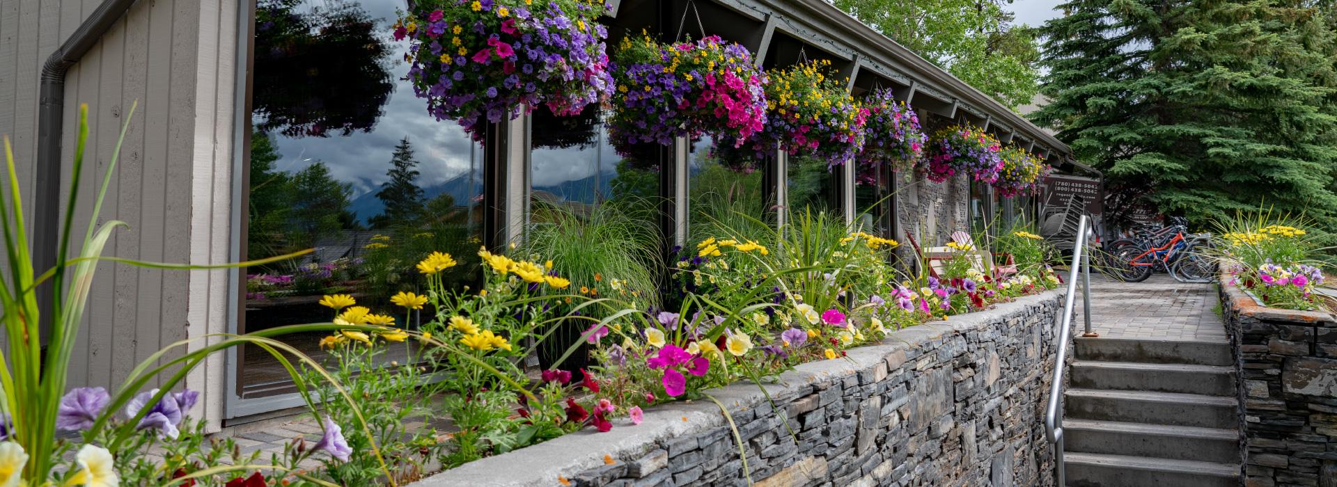 tunnel mountain resort - banff condos - location